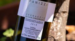 Eccellenze, Degustazioni vini Panizzi
