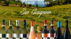 Full immersion, degustazione 10 vini Pan...