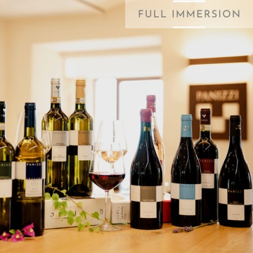 Full immersion, wines tasting of 10 Panizzi wines