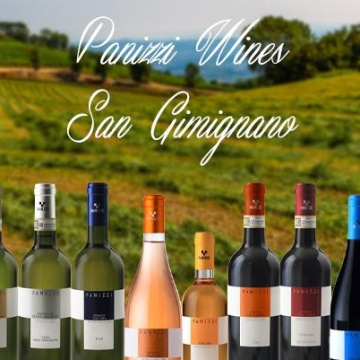 Full immersion, degustazione 10 vini Panizzi