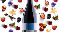 La scommessa del Pinot Nero di San Gimig...